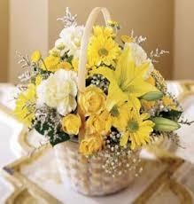 Rohit Flower Shop