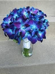 Suraj Florist