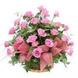 Khushi Flower