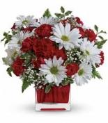 Makwana Florist