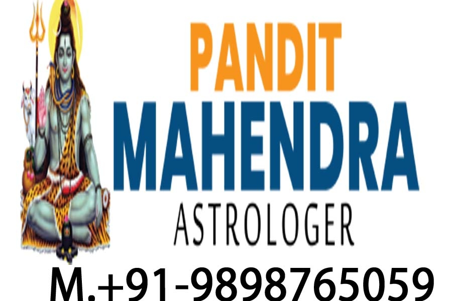 pandit mahendra astrologer