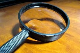 Laburnum Detective.