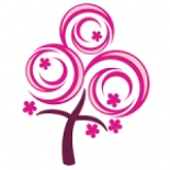 Blossom Promotion & Events